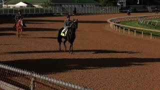 Kentucky Derby News Update for May 1