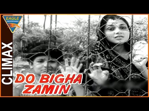 Do Bigha Zamin Hindi Movie || Climax Scene || Balraj Sahni, Nirupa Roy || Eagle Hindi Movies