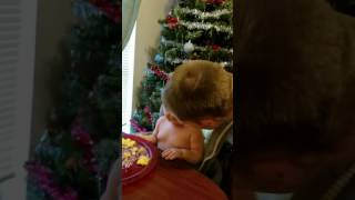 Dad shaves face baby hates it