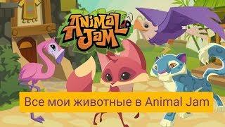 Все животные Молнии777 ( Лизы П ) в игре Animal Jam