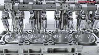 Mercedes-Benz: AMG