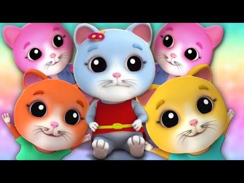 lima-anak-kucing-kecil- -kucing-lagu-untuk-anak-anak- -five-little-kittens