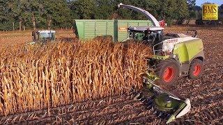 Maisernte 2018 - Mais häckseln u. silieren Energiemais für Biogas plant biggest corn harvest