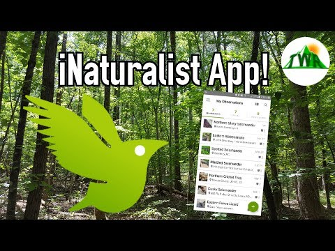 Dana McKenzie - iNaturalist and Plant Snap 2 of my FAV identify in nature apps