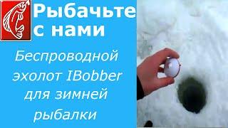 Беспроводной эхолот IBobber для зимней рыбалки(Беспроводной эхолот IBobber предназначен для поиска рыбы на зимней рыбалке. Соединяется IBobber с телефоном..., 2015-02-18T21:05:53.000Z)