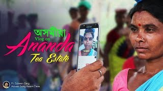 Tea estate vlog | Assam Tea | Ananda Tea Estate | Ft. Zubeen Garg Adivasi Song Assam Dese 🙂