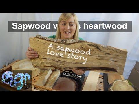 Sapwood versus Heartwood: A sapwood love story