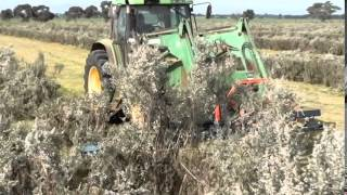 Ledgard Cutterbar Trimming Saltbush Hedge