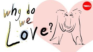 Why do we love? A philosophical inquiry - Skye C. Cleary thumbnail