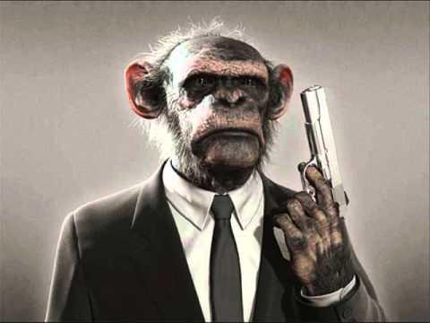 M.L.A - Monkey