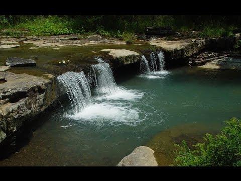 100% RELAX EN FORÊT 💦 Cascade Rivière Oiseaux – Anti-Dépression Stress Anxiété – Sommeil Réparateur
