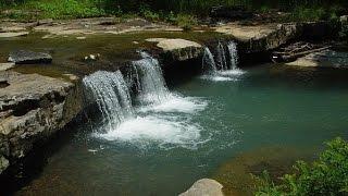 100% RELAX Rivière Oiseaux Forêt Cascade (2H) Anti-Stress Sommeil Etude Méditation Spa - ASMR