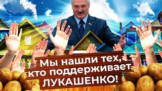 Что думает белорусская деревня о Лукашенко и протестах?