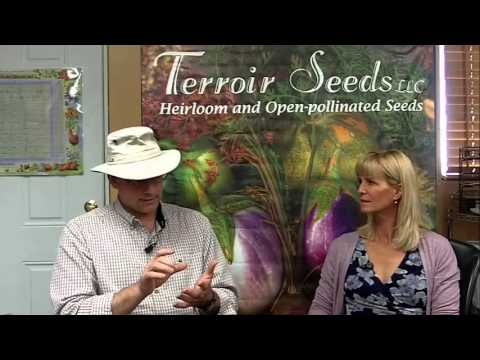 Introduction to Terroir Non-GMO Seeds Company