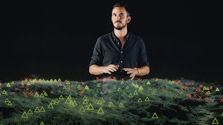 The global movement to restore nature's biodiversity | Thomas Crowther