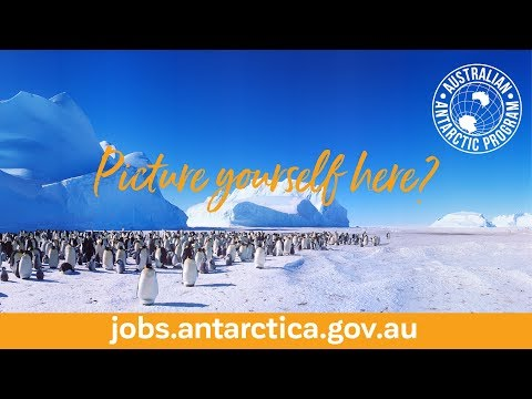 Live and work in Antarctica! APPLY NOW