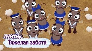 Тяжелая забота ⭐️ Лунтик ⭐️ Сборник мультфильмов 2019