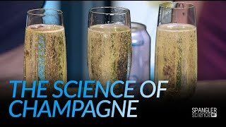 The Science of Champagne - How to Keep the Fizz