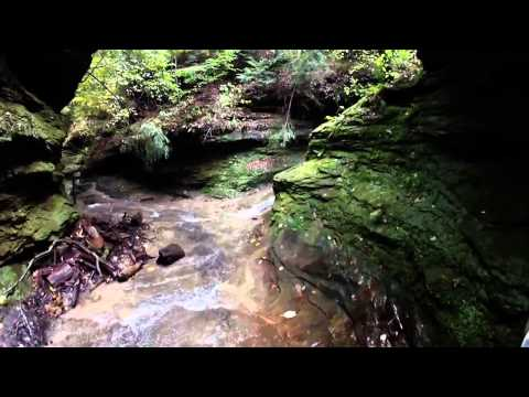 Turkey Run State Park Trail 3