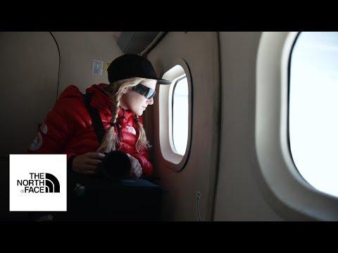 Antarctica: Nerves