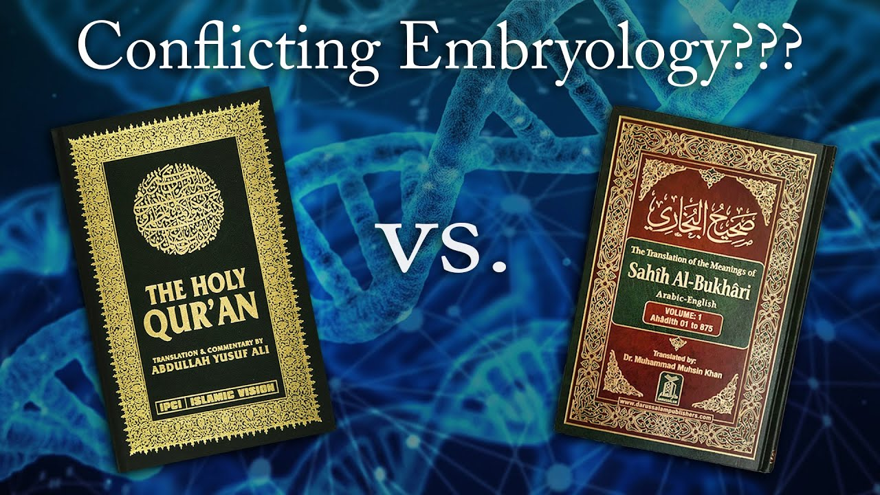 Conflicting Embryology in the Quran and Hadith?