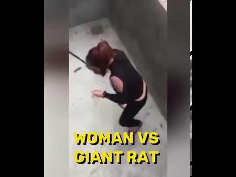 Women vs Rat