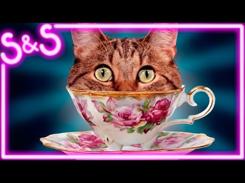 TO TEA OR NOT TO TEA? (Tea Party Simulator 2015)