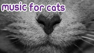 Cat Music 15 hours of relaxing sleep music for your cat!
