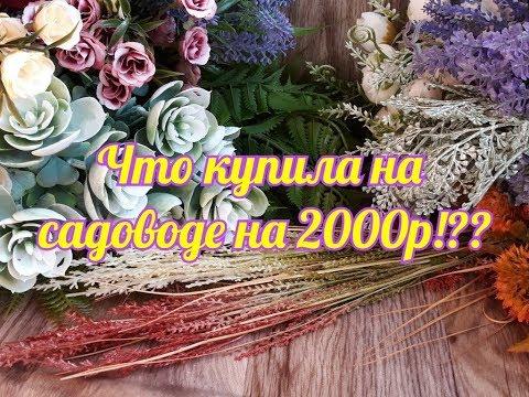 ЗАКУПИЛАСЬ НА САДОВОДЕ НА 2000р/Зелень для букетов/Шикарный улов!