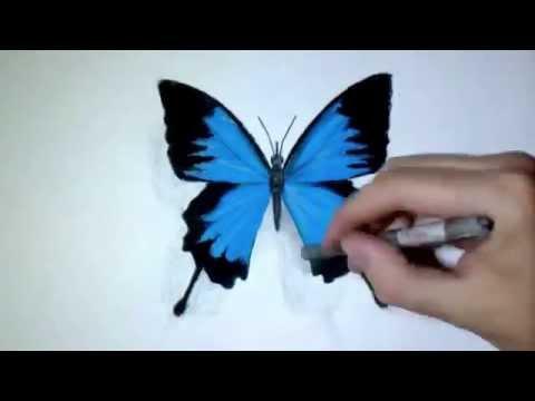 cara gambar kupu-kupu 3d keren - YouTube