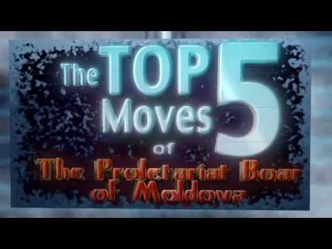 Top 5 Moves of the Proletariat Boar of Moldova