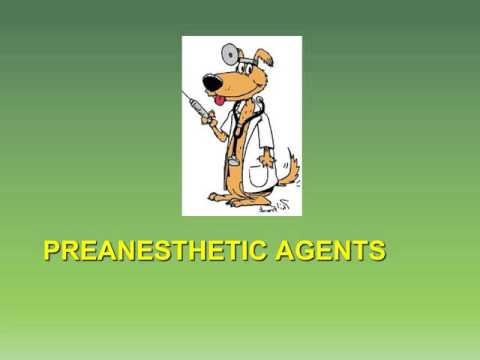 MBC Vet Tech Online Review 5.1 - Anesthetic Agents