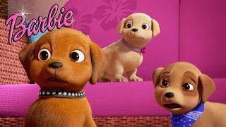 Щенки и новый друг! Мультик Барби: в поисках щенков.