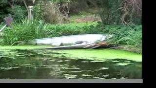 Texas Freshwater Fishery - Athens, TX