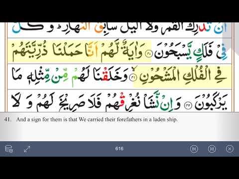 surah-36:-ya-seen-beautiful-recitation-by-sheikh-mahir-al-muaiqly