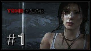 Tomb Raider 2013 PC Gameplay (TressFX) - Part 1 - Survivors