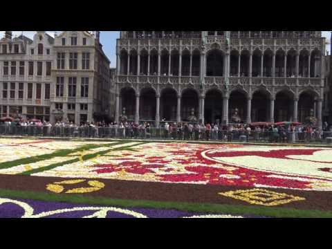 Flower carpet, Brussels Grand'Place in 4K (UHD)