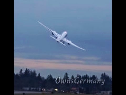JAL 787 Wild Wing Wave Delivery Flight @ KPAE Paine Field