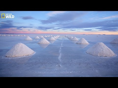 National Geographic - Sea salt: excellent product of nature and the secret - Documentary