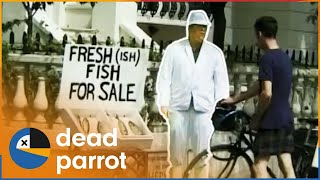 Giant Phone Call At Library - Trigger Happy TV