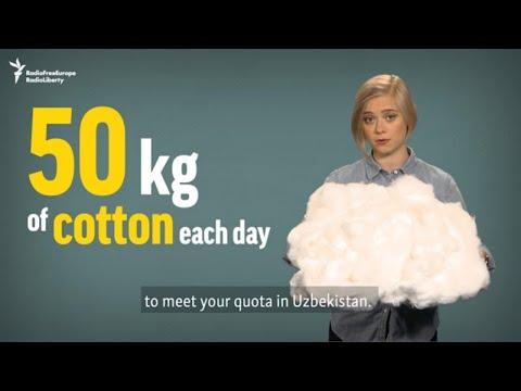 5 Cents Per Kilo: Why Uzbek Government Still Forces People To Pick Cotton