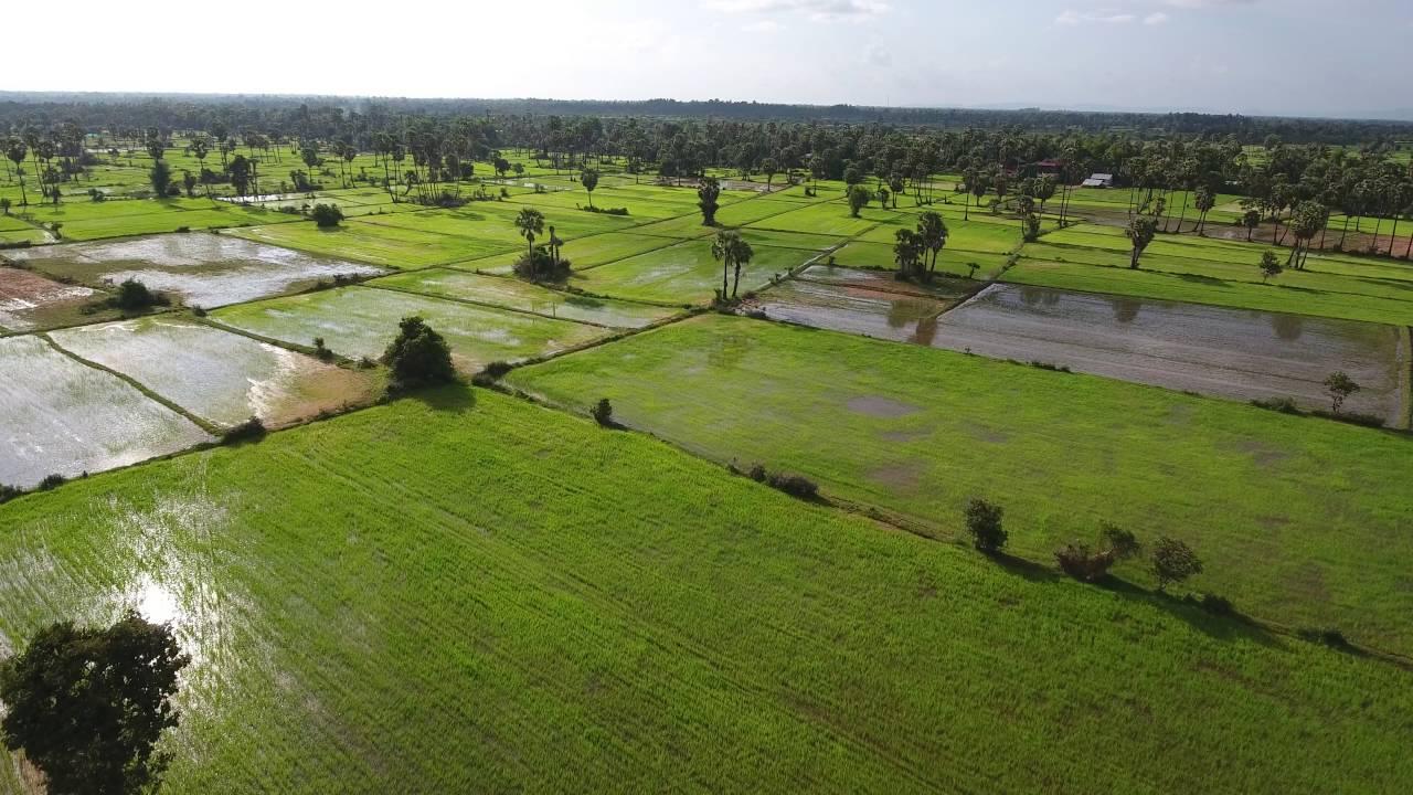 Hung Hiep (Cambodia) 柬埔寨馨合 - Home