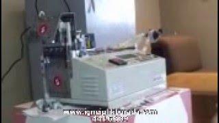 JM 120HLR Sensörlü Otomatik Sıcak Soğuk Etiket Kesim Makinesi