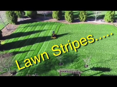 Mowing the lawn! Wright Mower Stripes