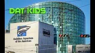 New Orleans Aquarium visit-DAT Kids