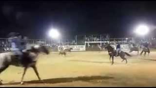 Torneo De Lazo El Retoño De Hacienda Teya