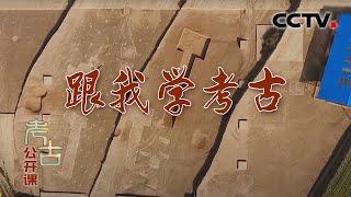 《考古公开课》 20200524 跟我学考古  CCTV科教