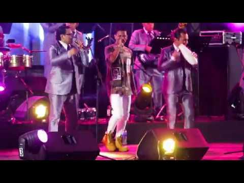 The King Flyp Ft Salsalvador All Stars -...