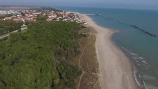 Le dune a Casalborsetti