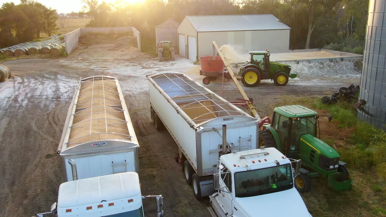 The trucks keep coming! Harvest time